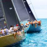 sailing yachts regatta yachting sailing 1258 319